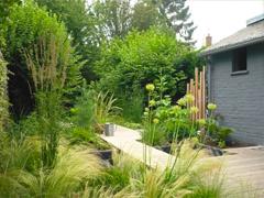 Espaces verts : Plantations : arbres, arbustes,  fleurs , paillage et engazonnement