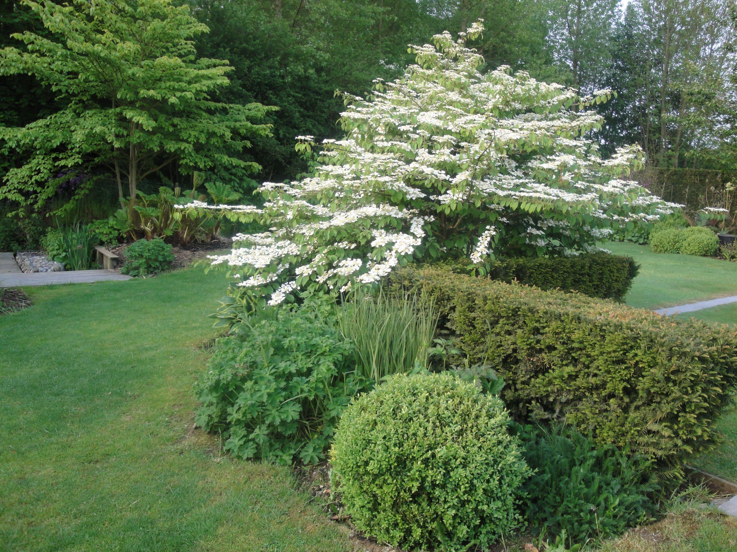 Cr Ation Et Am Nagement De Jardin Paysager Home Ext Rieur