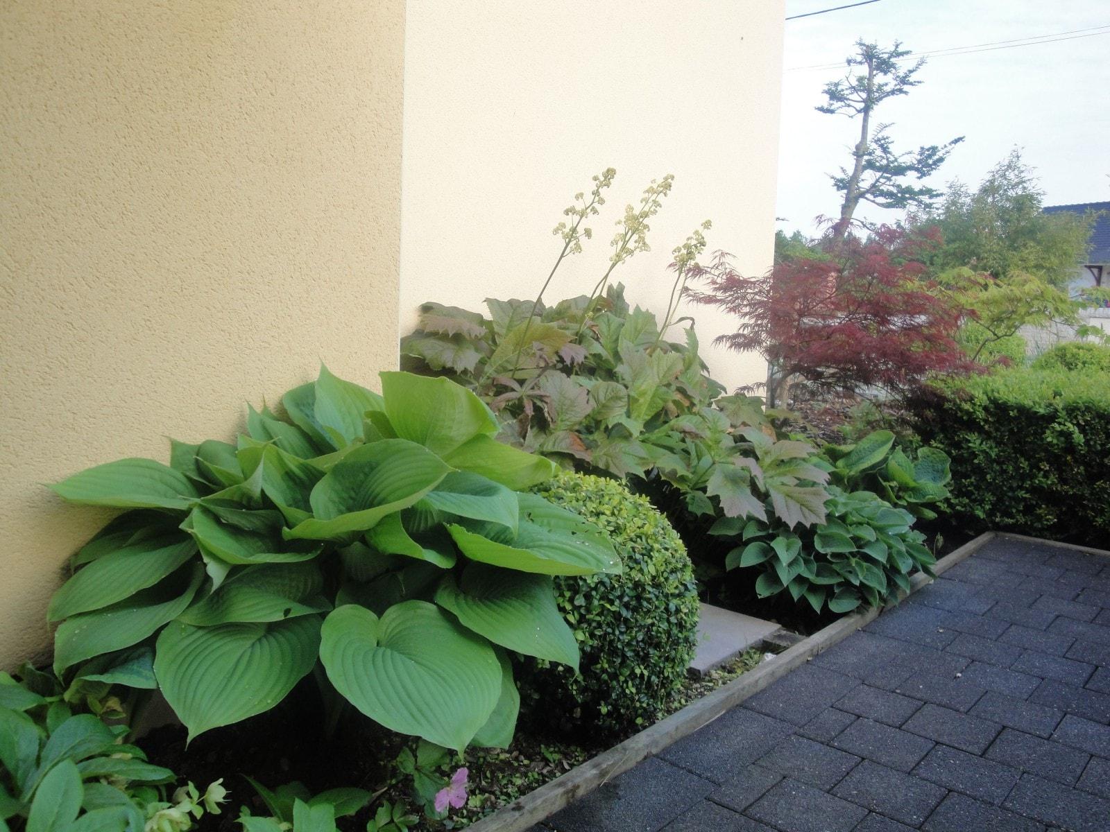 jardin naturel comines 59 nord home ext rieur. Black Bedroom Furniture Sets. Home Design Ideas